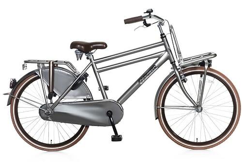 popal daily dutch basic jongens transportfiets 24 inch grijs
