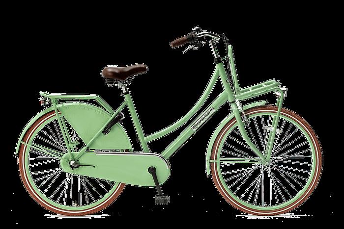 Popal daily dutch 26 inch N3 Meisjesfiets Transportfiets 26 inch met versnellingen Pistasch groen