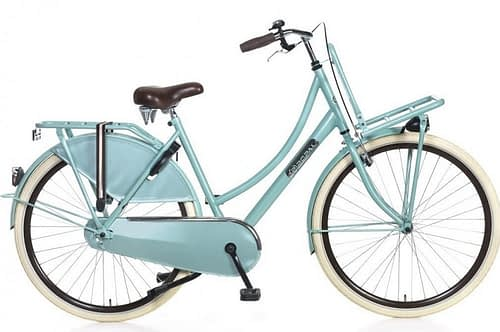 popal Daily dutch basic transportfiets 28 inch Groen